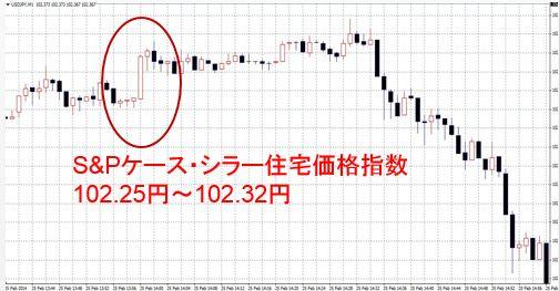 S&Pケース・シラー